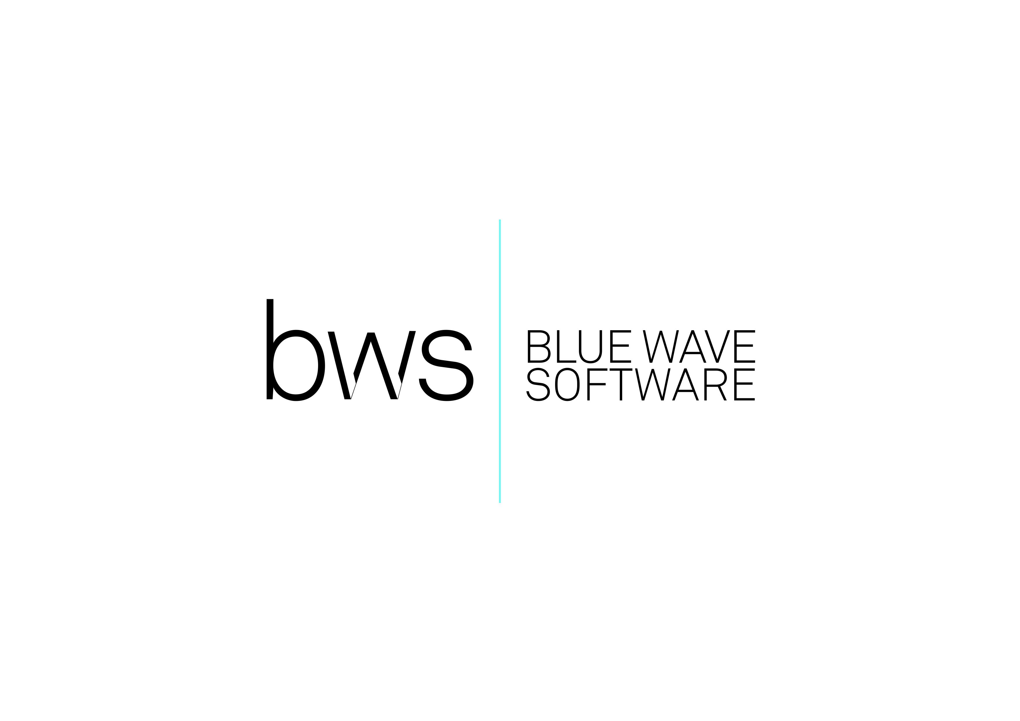 BLUE WAVE SOFTWARE
